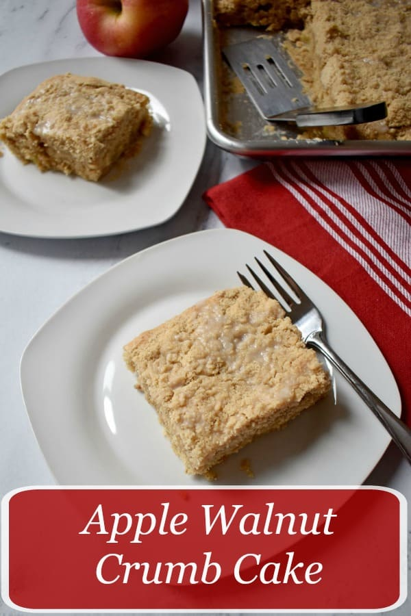 Apple Walnut Crumb Cake is incredibly moist and full of wonderful fall flavors. The combination of apples, walnuts, and ground cinnamon make this gluten free cake a must bake! recipe at www.flavorwalk.com #glutenfree #apple #cake #dessert #breakfast